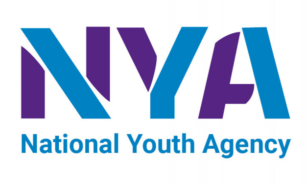 National Youth Sector Census