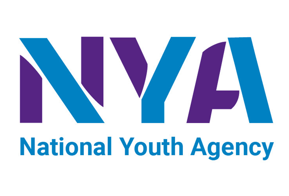 NYA – Young Researchers Programme